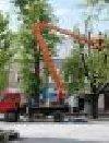 Wycinka, przycinka drzew, pielęgnacja zieleni poszukuję Remontowe / Budowlane