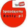 Kotły na pellet,drewno, ekogroszek- Chodzież, Piła, Wałcz, Wągrowie Zdjęcie