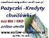 Szybkie i łatwe pożyczki do 100 000 zł.  Zdjęcie
